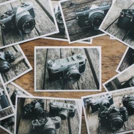 Хранение фотографий: всё об организации фотоархива